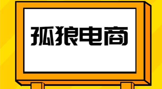 孤狼电商店群VIP教程:孤狼店群2021-禅中说电商